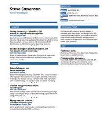 images about beautiful résumé designs on pinterest   resume    resumonk resume creator