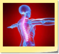 Risultati immagini per immagini test muscolare kinesiologico