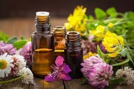 Image result for scents