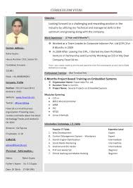 create a resume student resume template doc558732 create resume for template bizdoska