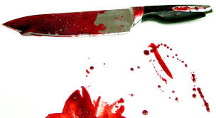 Image result for pictures of knives with blood
