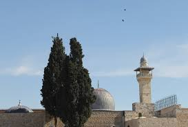 western wall photo essay on site seen on sight scene ightly opening shot al asqa mosque on temple mount harem el sharif