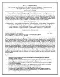executive resume finance executive resume