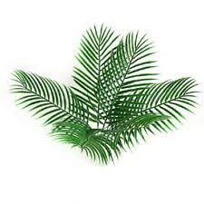 <b>Пальма</b> пластик цветочный декор зеленый - огромный выбор по ...