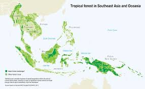 <b>Tropical</b> Forest in <b>Southeast Asia</b> and Oceania   GRID-Arendal