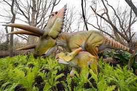 <b>Dinosaur</b> Discovery - Woodland Park Zoo Seattle WA