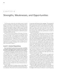 chapter 6 strengths weaknesses and opportunities state dots page 28