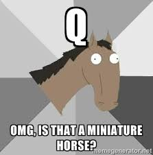 q omg, is that a miniature horse? - Retard Horse | Meme Generator via Relatably.com