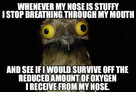 Top Funny Stuffy Nose Images for Pinterest via Relatably.com