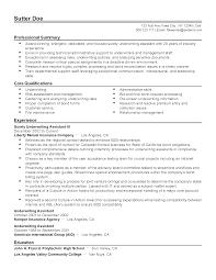 professional surety underwriting assistant iii templates to resume templates surety underwriting assistant iii