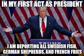 Bildergebnis für trump elected president