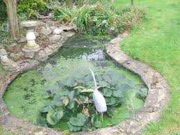 Small Picture Concrete Water Pond Garden pond design The Garden Pond Blog