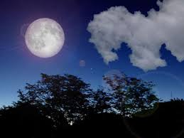 POEMAS SIDERALES ( Sol, Luna, Estrellas, Tierra, Naturaleza, Galaxias...) - Página 15 Images?q=tbn:ANd9GcTqoZ1kqbftst2FhmAXITqz8dn7A3aOmcGeMc0nm4mJOhMyJ_by
