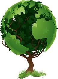 29 de agosto, Día del Árbol