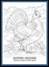 Small Picture Pennsylvania State Bird DrawingStatePrintable Coloring Pages