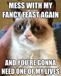 Grumpy Cat gets testy | Funny | Pinterest via Relatably.com
