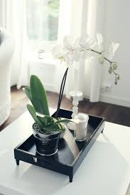 day orchid decor: love orchids tray from day home candle from tine k