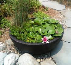diy patio pond: patio container gardens are aquatic gardens big and small cedarrunlandscapes
