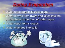 Image result for evaporation of water
