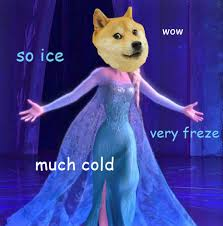 Image result for doge meme