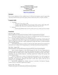 best photos of basic resume summary examples sample resume computer skills summary resume samples