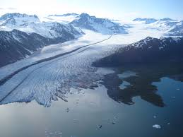 Image result for fjords with glaciers