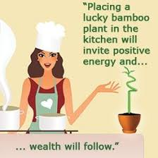 applying feng shui to your kitchen for prosperity in life applying good feng shui