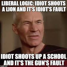 Image result for LIBERAL IDIOT