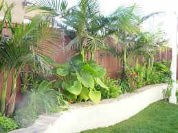 Small Picture Screen lower houseblockwork tropical landscaping Pinteres
