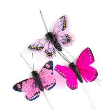 <b>Beautiful Butterfly Decorative</b> Set - The Knot Shop