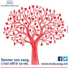 """Résultat de recherche d'images pour """"don du sang"""""""