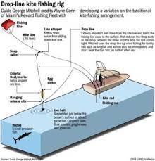 Miami Fishing - Kite Fishing