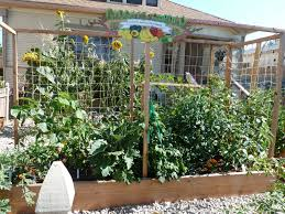 attractive small space vegetable garden ideas small space garden design pictures gallery attractive small space