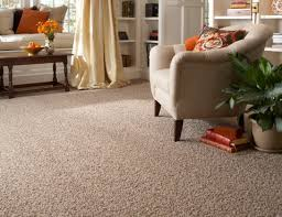 Carpet cleaning in Rochester MI
