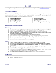 Executive Summary Accounting Resume resume summary example ...