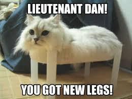 My Favorite Cat Memes - FIMFiction.net via Relatably.com