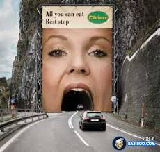 Image result for funny pictures