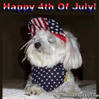 Image result for 4th of July gifs