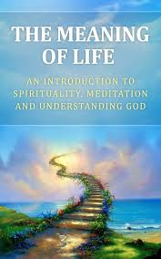 the meaning of life essay   wwwvegakormcom the meaning of life essay