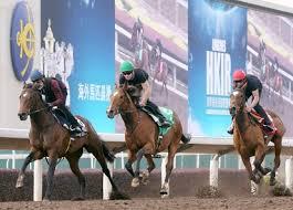 <b>Magical</b> (IRE) - <b>Horse</b> Profile - BloodHorse