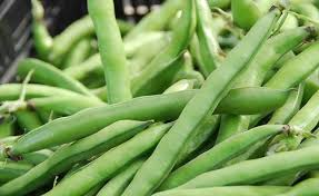 Image result for Fava beans