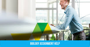 Assignment Help Australia Online and Do My Assignment for Me Australia Assignment Help from Professionals law assignment help in Sydney Region NSW Other Learning Exceptional Assignment Essay