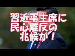「中国・習近平主席の虚像」の画像検索結果