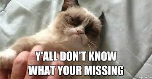 Grumpy Cat - WeKnowMemes Generator via Relatably.com