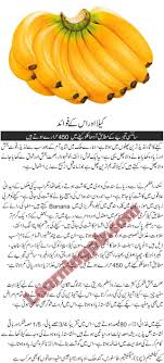 best websites for urdu essays homework academic service best websites for urdu essays