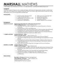 Example Of Assistant Nurse Manager Resume   Clasifiedad  Com