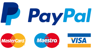 Image result for secure card payments logo