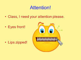 Image result for pics of zipped lips