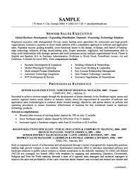 executive resume format resume badak s executive sample resume