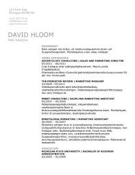 technical specialist resume template free traditional resume templates